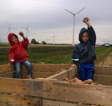 Kinder bei der Kartoffelernte auf dem Bauernhofkindergarten Mahlinki in Mahlitzsch im Landkreis Nossen, copyright by mahlinki